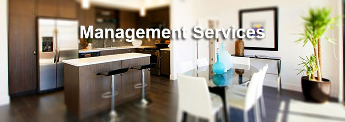 management-services-drop-shadow-700p