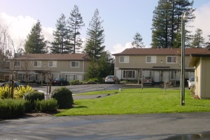 539 West Sierra Avenue,Cotati,California,United States 94931,2 Bedrooms Bedrooms,2 BathroomsBathrooms,Apartment,West Sierra Avenue,1102