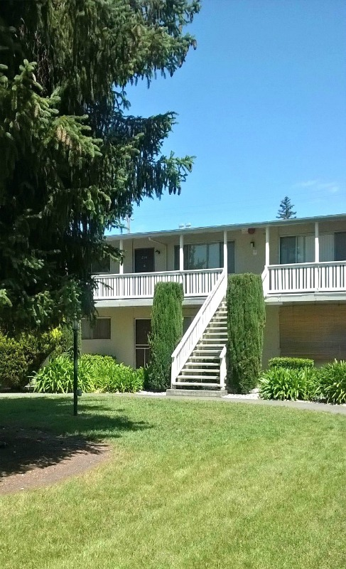 240 Brookwood Avenue, Santa Rosa, California, United States 95404, 2 Bedrooms Bedrooms, ,1 BathroomBathrooms,Apartment,Two Bedroom,Brookwood Avenue,1228