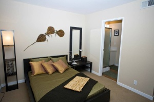200 Bolinas Road, Fairfax, California, United States 94930, 1 Bedroom Bedrooms, ,1 BathroomBathrooms,Apartment,One Bedroom,Bolinas Road,1229