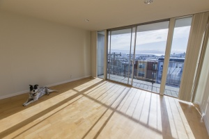 655 Kansas Street, San Francisco, California, United States 94107, 1 Bedroom Bedrooms, ,1 BathroomBathrooms,Apartment,One Bedroom,Kansas Street,1035