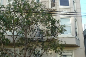 2345 Larkin Street, San Francisco, California, United States 94109, 1 Bedroom Bedrooms, ,1 BathroomBathrooms,Apartment,One Bedroom,Larkin Street,1366
