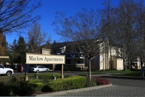 3076 Marlow Road, Santa Rosa, California, United States 95403, 1 Bedroom Bedrooms, ,1 BathroomBathrooms,Apartment,One Bedroom,Marlow Road,1504