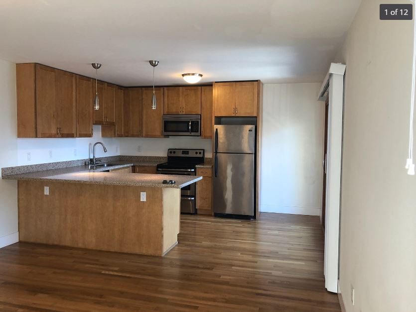 200 Arguello Blvd, San Francisco, California, United States 94118, 1 Bedroom Bedrooms, ,1 BathroomBathrooms,Apartment,One Bedroom,Arguello Associates,Arguello Blvd,1847