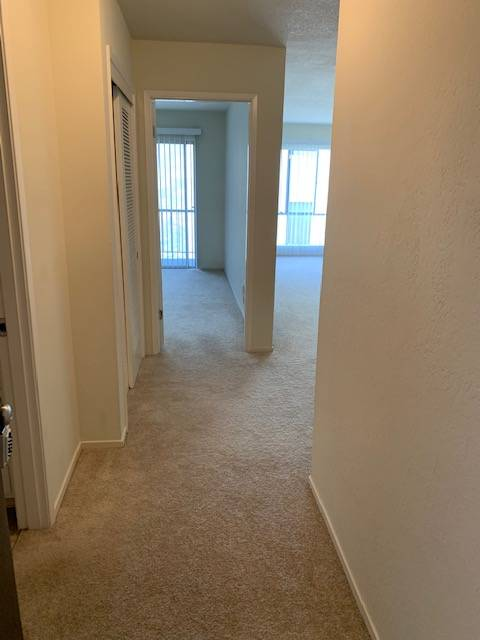401 Vernon St., Oakland, California, United States 94610, 1 Bedroom Bedrooms, ,1 BathroomBathrooms,Apartment,One Bedroom,Vernon St.,1912